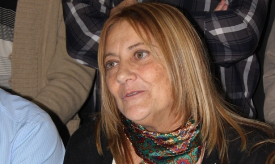 Colegio San Martín - Stella Ilvento: