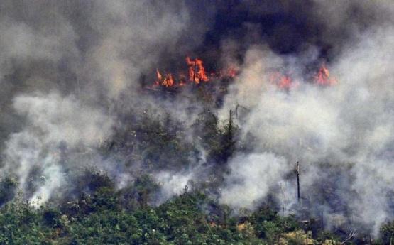 Cómo puede afectar en Argentina el humo que provoca el incendio en el Amazonas