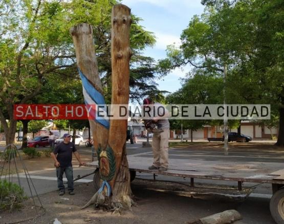 Retiraron el retoño de San Lorenzo de la plaza San Martín