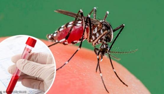 Detectan un caso de dengue en Pergamino, siendo el único en la región